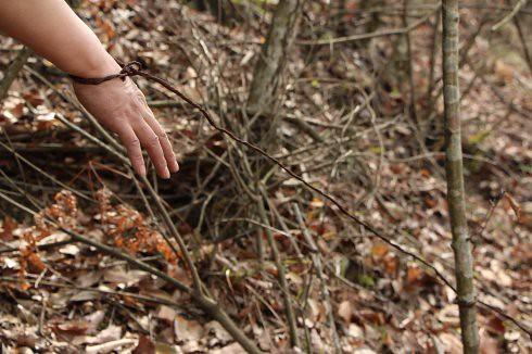 神農耕者表示,神農架林區佈滿類似的捕獸鋼絲套,路過的野生動物一旦套入便無法逃脫,有的動物甚至會把自己四肢咬斷,以求脫身。