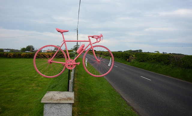 Giro Pink on the North Coast