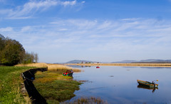 more from my recent morning walk around Newburgh Fife, yes more bloody boats...