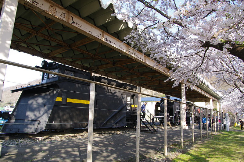 2014日本東北賞櫻之旅
