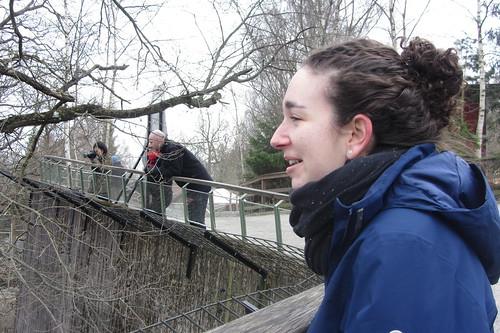 People look into a zoo enclosure