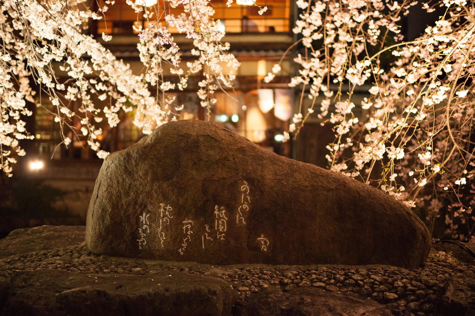 祇園、宵桜。
