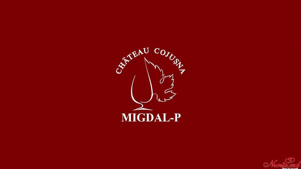 "Compania  ""Migdal-P""  > Foto din galeria `Principala`"