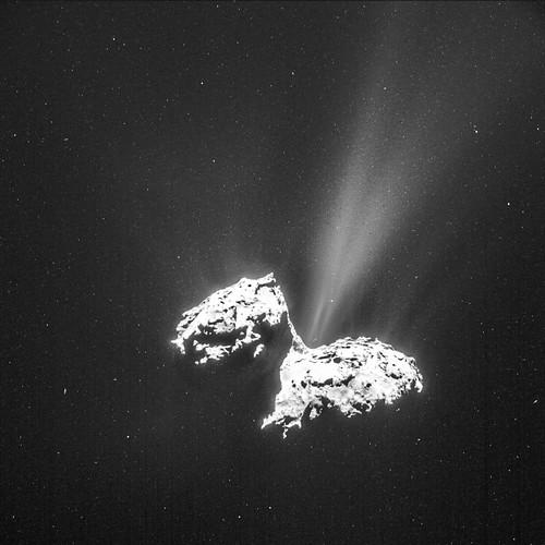 L'actualité de Rosetta - Page 6 16499719701_a92ee701f3