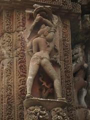 Rajarani Mandir (6)