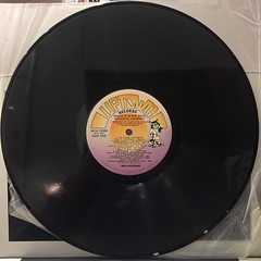 HEAVY D & THE BOYZ:PEACEFUL JOURNEY(RECORD SIDE-A)