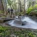 Olallie Creek by Mark Griffith