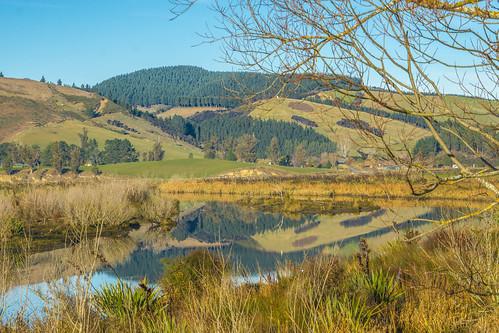newzealand southisland otago dunedin waipoririver