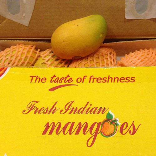 Kesar mangos! $25/dozen at Patel Bros. if you hurry.