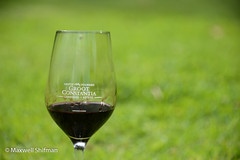 Groot Constantia wine glass