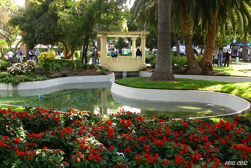 Viña del Mar | Plaza Vergara - Vergara Square