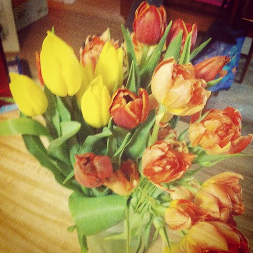 Kids let me sleep in, and got tulips from both my girls & my boyfriend. Pretty spectacular Mother's Day overall. Feeling grateful.