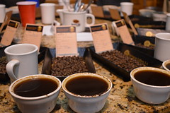 A cupping at Exclusive Coffee.