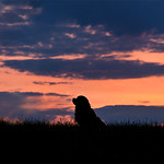 20130621-024_web960_sunset