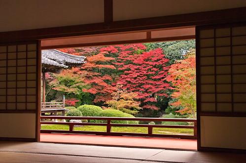 【写真】紅葉 : 随心院
