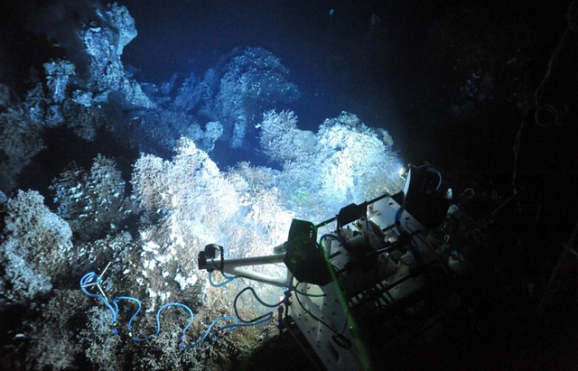 Tempo-Mini was deployed by ROPOS near the base of Grotto vent edifice (2168m depth) on 29 September 2011.