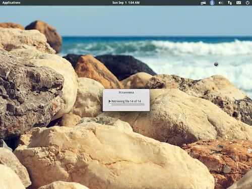 Установка elementary OS