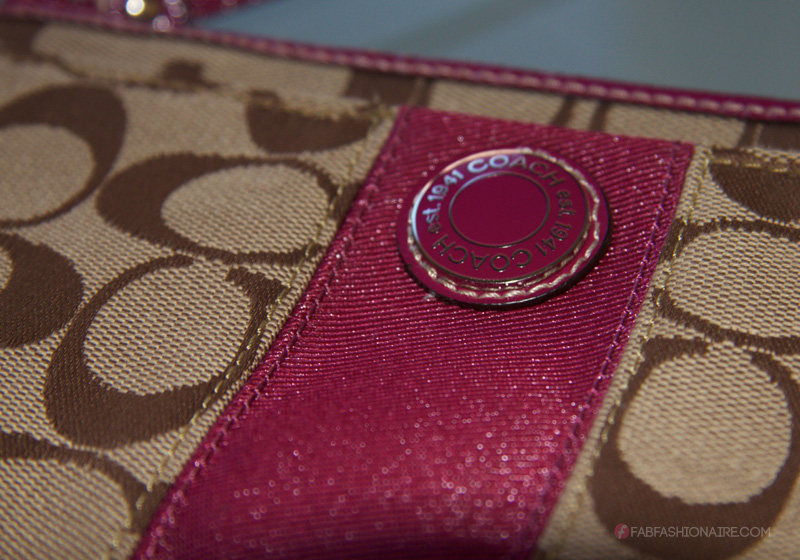 coach bag - close up