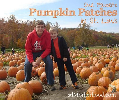 St. Louis Pumpkin Farms