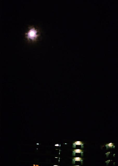 「秋音」 月ノ音 #224 かず