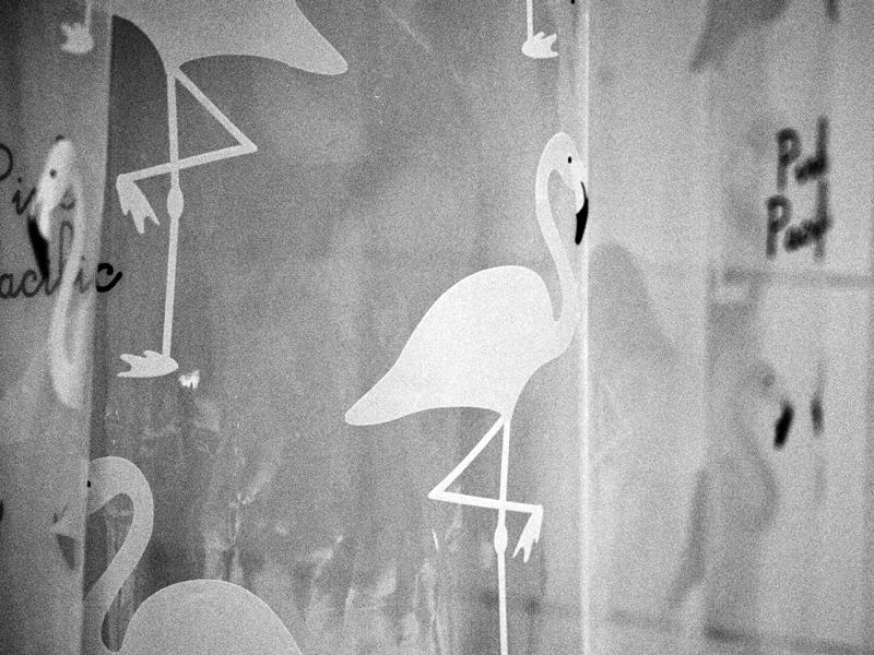 flamingo suihkuverho