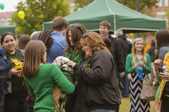 Homecoming 2013: Party at the Plaza/Reunions/Jerry the Bulldog/Crowning 10/26/13