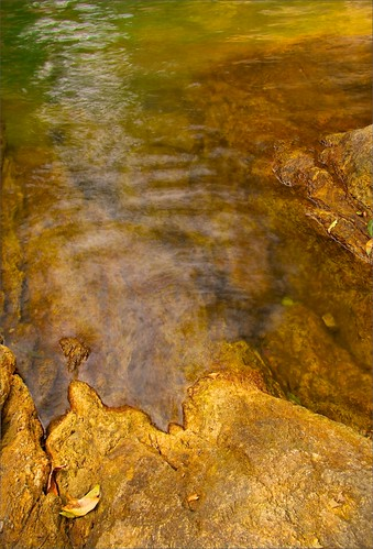 rockpools waterscapes waterholes waterimages abstractimages intimatelandscapes abstractlandscapes topazadjustanddetail irwinreynolds smallscalelandscapes cedarcreekmounttamborine cedarcreektamborinemountain abstractlandscapephotographs colourfulwaterholes colorfulwaterholes
