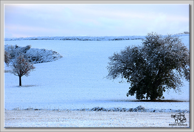 En busca de las primeras nieves (2)