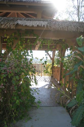 alta vista gardens (4)