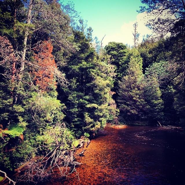 Styx river #sundaywandering #instatassie