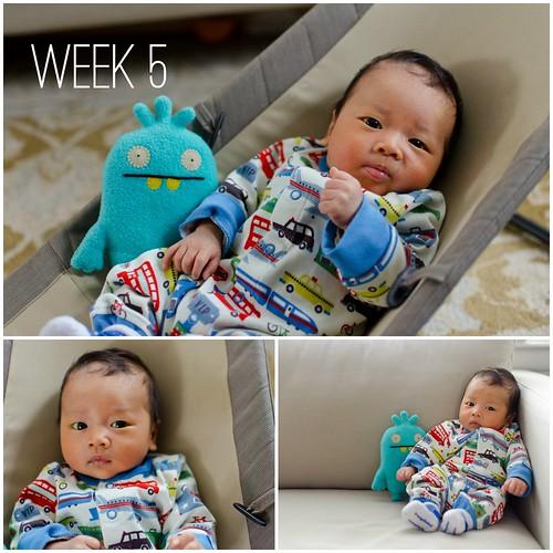 Oliver - Week 5