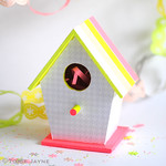 Neon Blush bird house