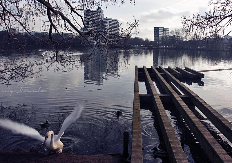 Wasserwelt Wöhrder See, Nürnberg