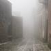 È l'incertezza che affascina. La nebbia rende le cose meravigliose. by illyphoto