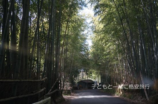 iwashimizu025