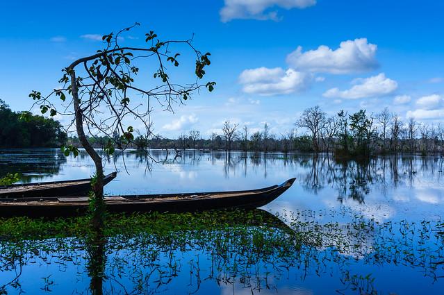 TanzPanorama - Nature's tranquility