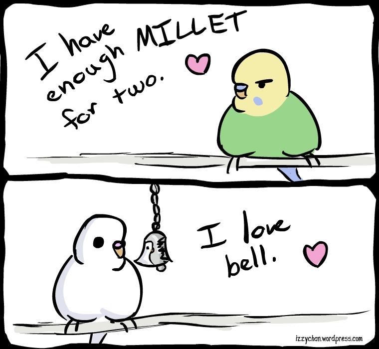 danger bird budgies millet bell love