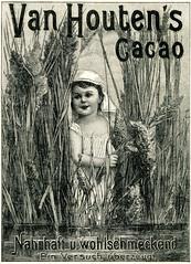 Werbeanzeige für Van Houten Kakao, Bild 4