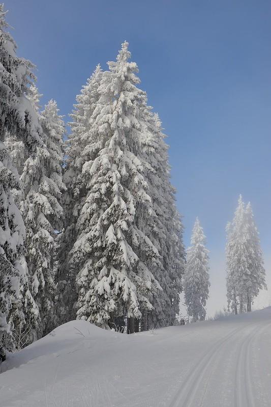 Fresh Cross-country ski trail - Gurnigel