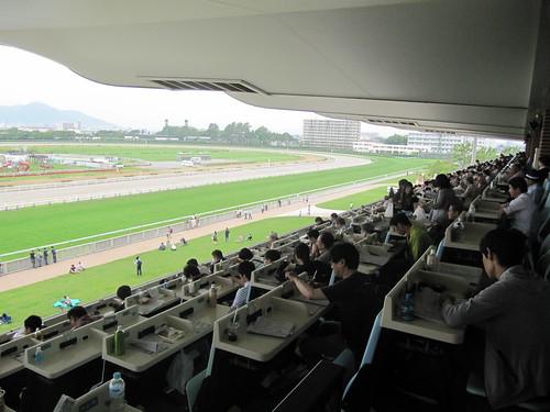 函館競馬場の指定席を見下ろす