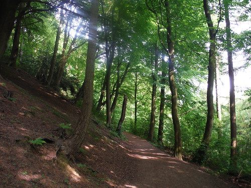 Steepsided Limb Valley