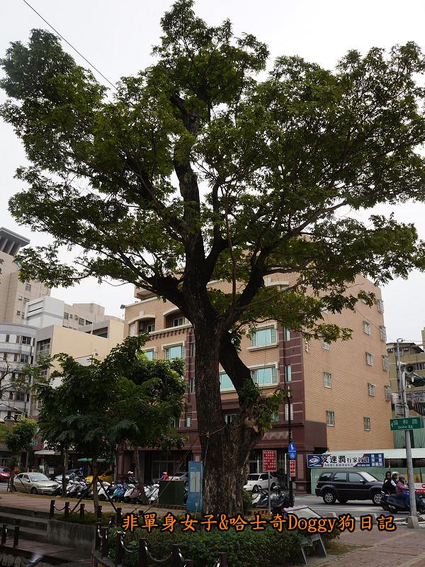 高雄鳳山車站中華街夜市曹公廟曹公圳平成炮台26