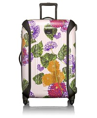 AnnaSui-luggage1