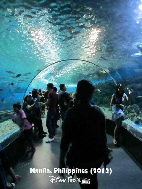 Day 5 - Philippines Manila Ocean Park 05