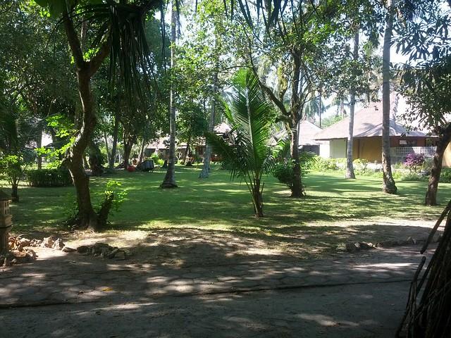 К территории пляжа прилегает парк