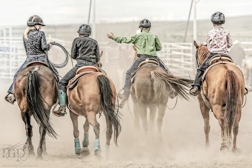 Gooseberry Lake : 4-H Rodeo 2013 : Pushing Back