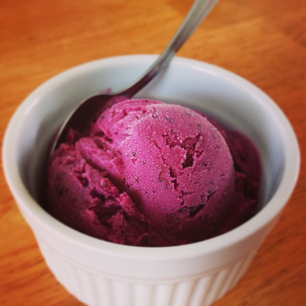 Homemade blueberry frozen yogurt. Tastes like summer! #blueberryyumyum