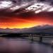 Bay Bridge, Arise