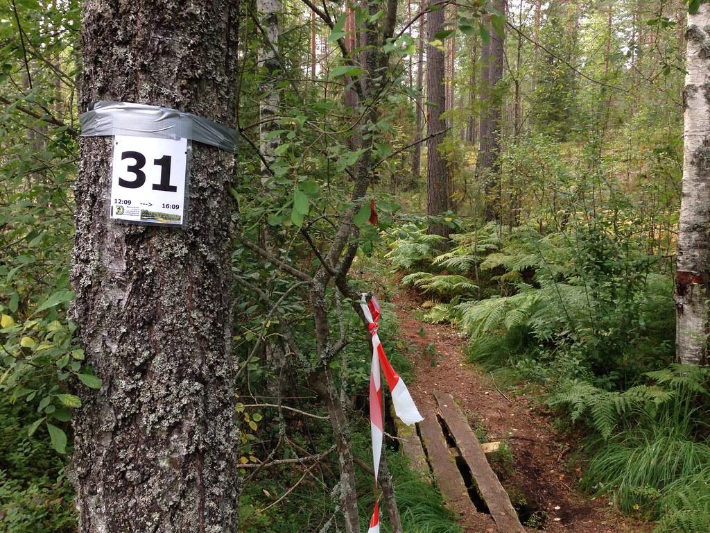31 aka 11 km to go