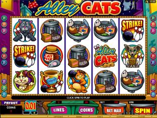 Alley Cats<
